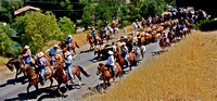 2010 Paso Robles Cattle Drive